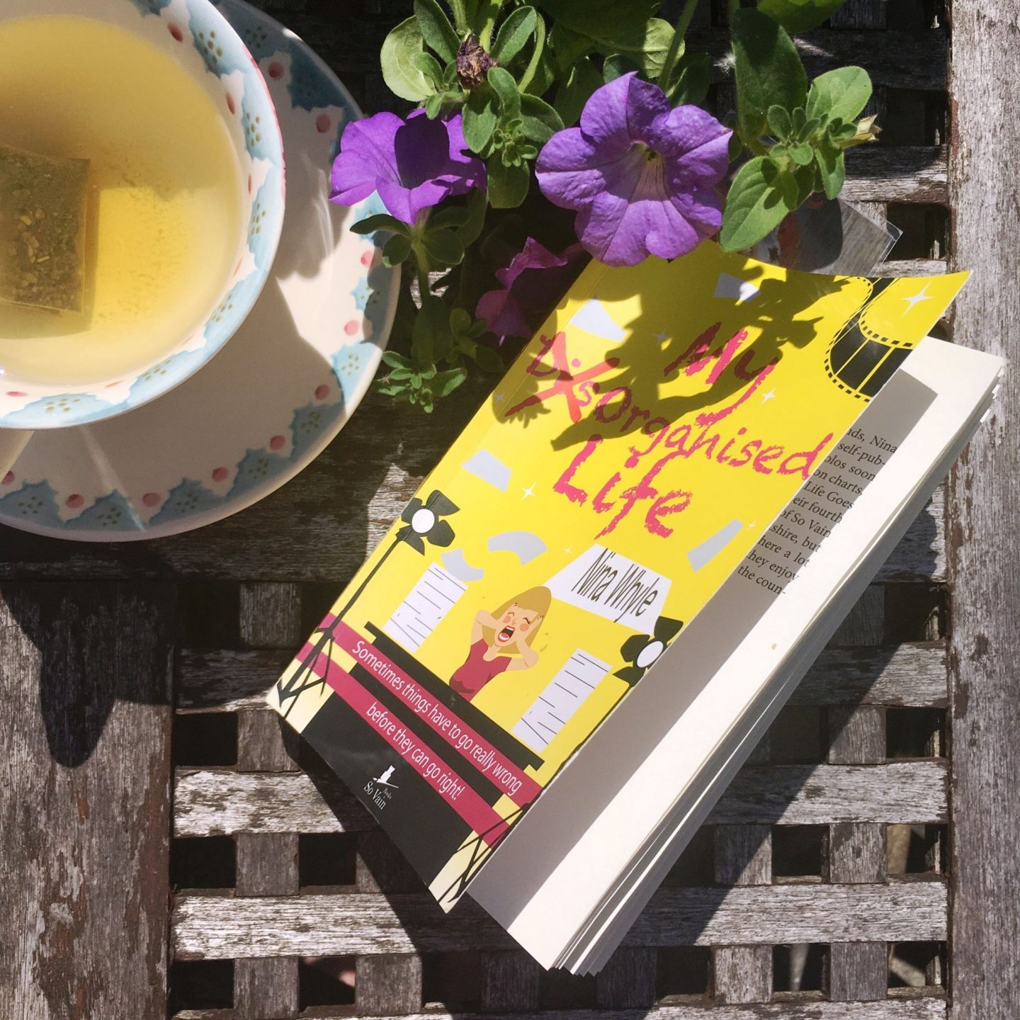 My DisOrganised Life: an ideal read for holiday…