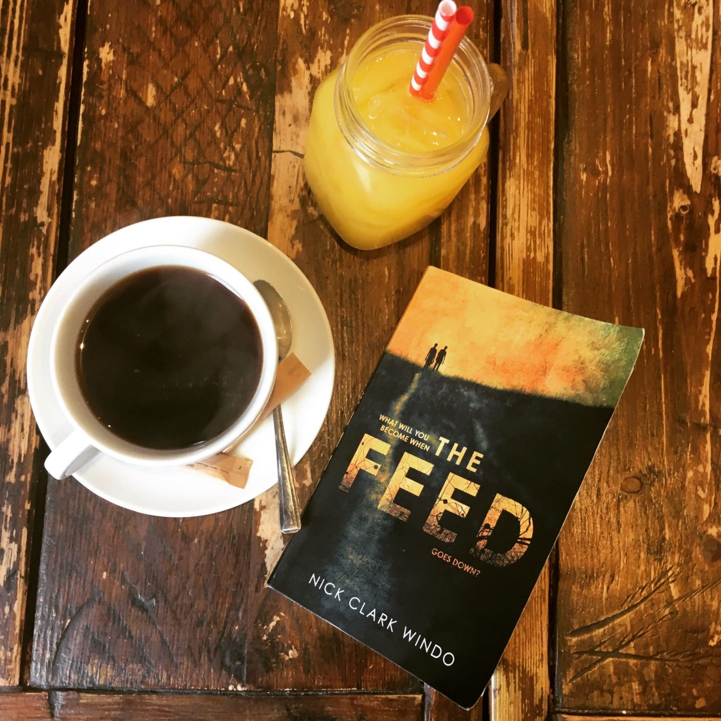 New Voices 2018: The Feed