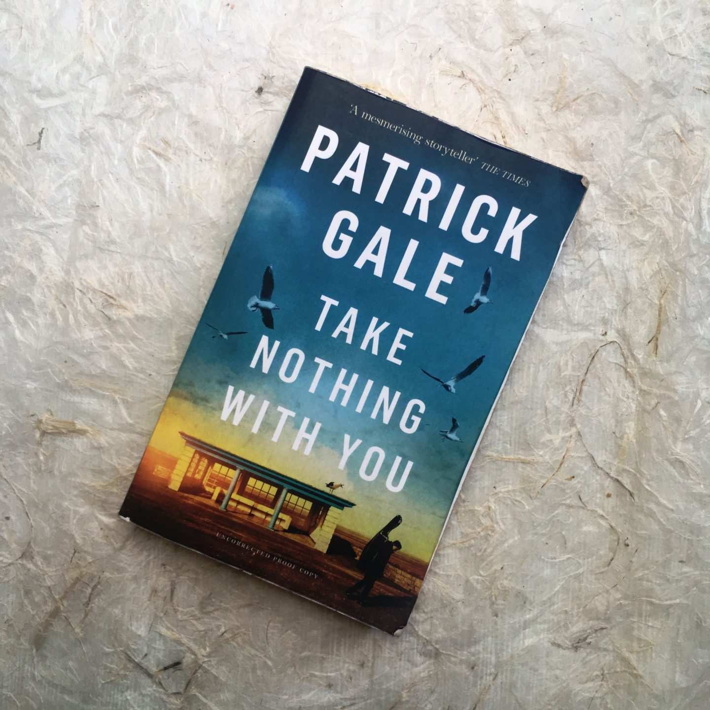 Take Nothing With You by Patrick Gale: beautifully symbolic