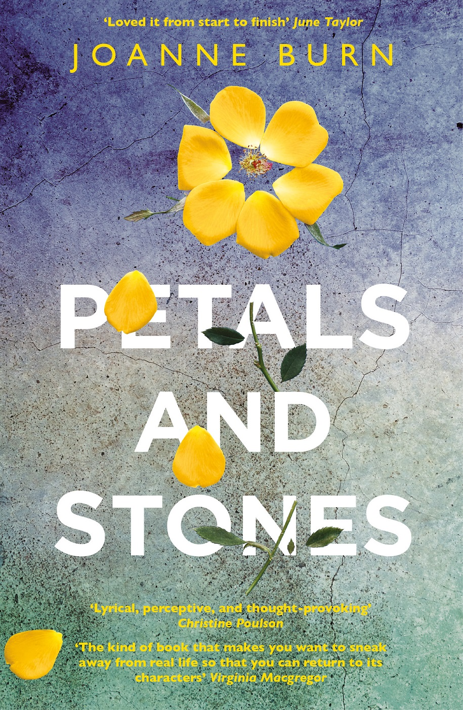Blog Tour: Petals and Stones
