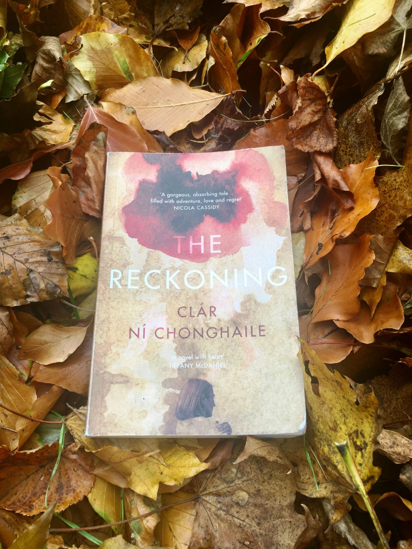 The Reckoning; literary fiction at its best