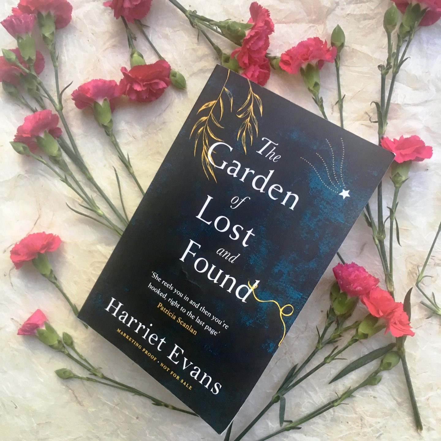 The Garden of Lost and Found; a book to love and get lost in
