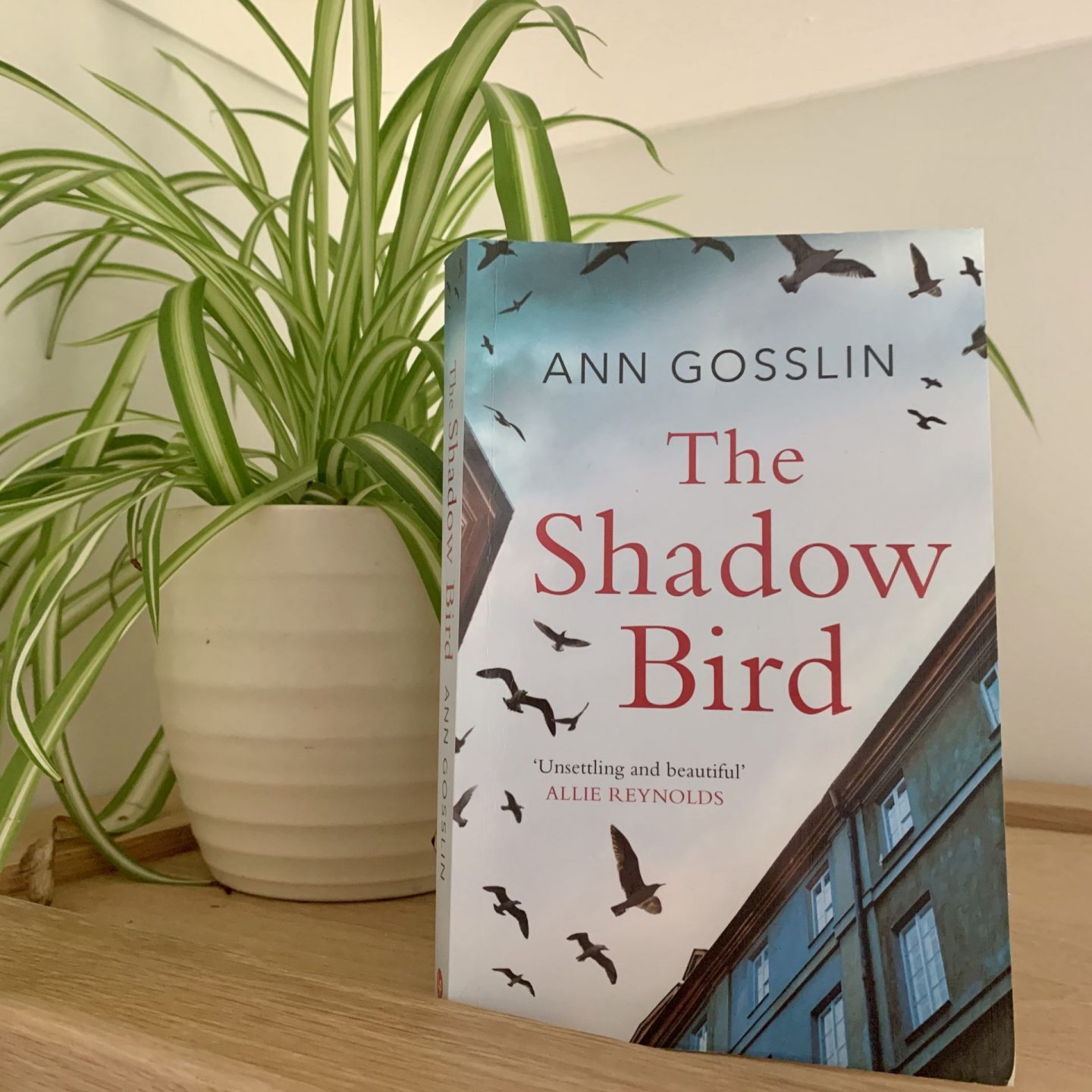 The Shadow Bird; an emotive, twisting thriller