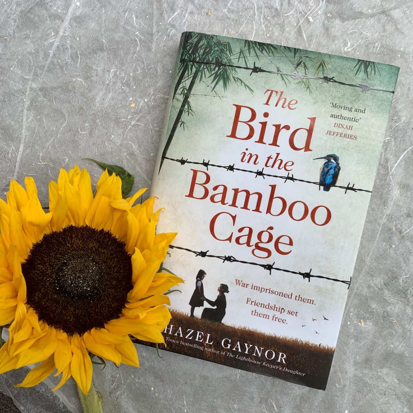 The Bird in the Bamboo Cage; evocative and emotionally charged