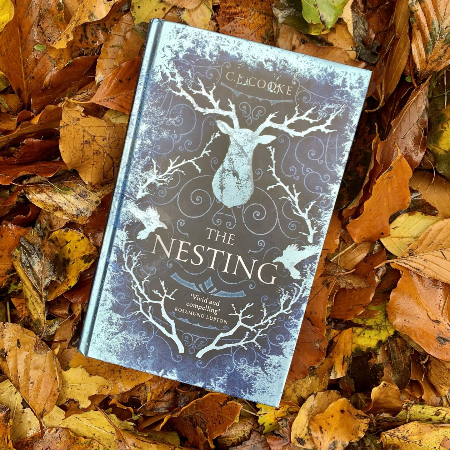 The Nesting; a ghostly tale rich in Nordic folklore