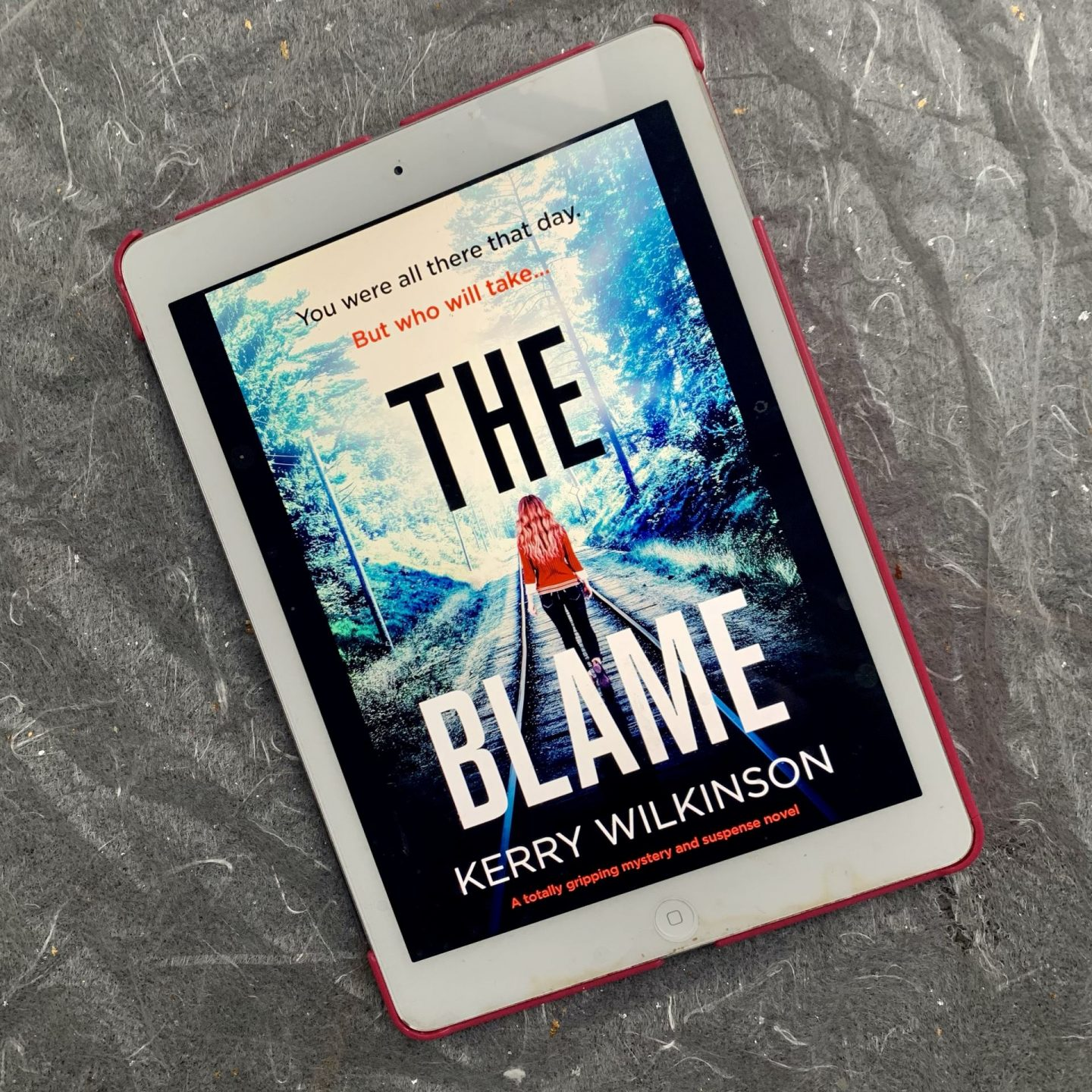 The Blame; a dark murder mystery